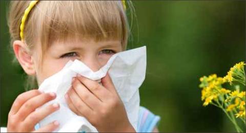 allergie02